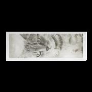 nick-the-cat-yoga-mat