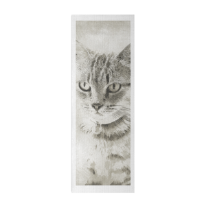 Cat Print Yoga Mat
